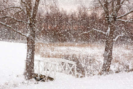 Beautiful winter snow landscape in Finland.