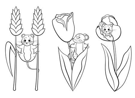 Cute cartoon forest vole or mouse vector coloring page outline set. Vole with flowers. Mouse hiding in tulip. Forest animals for kids. Isolated on white background