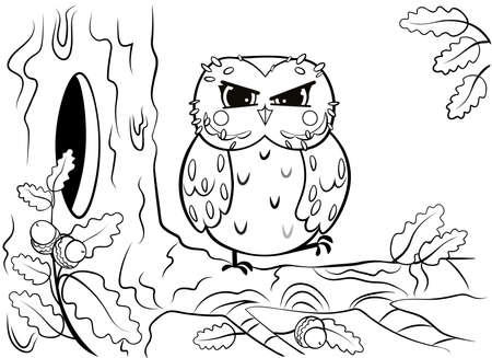 Printable coloring page outline of cute cartoon owl sitting on tree branch near the hollow. Vector image. Coloring book of forest wild animals for kids