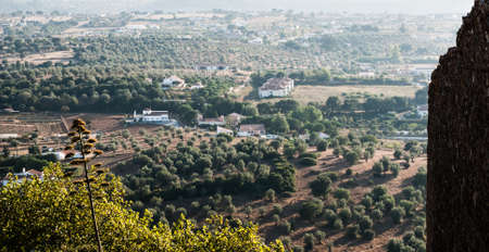 Looking over typical houses in Montemor, Alentejo, Portugal photo