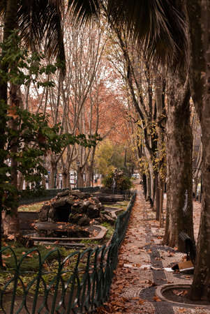View of Lisbon street in autumn, Portugal