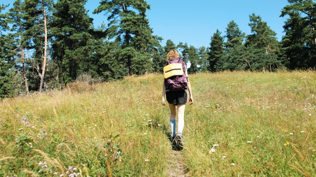 Woman tourist with a backpack walking in a field of wildflowers in a national park in the forest in the summer