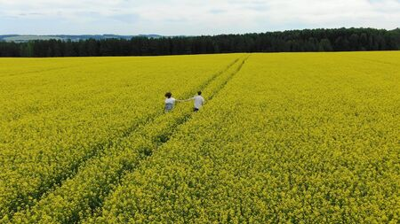 romantic couple in love silhouette runs along yellow blooming rapeseed field joining hands aerial view