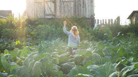 young pretty lady in cap walks along green garden plants