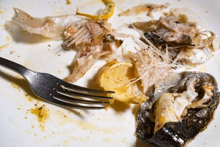 Fish bones and their skin lie on a dirty plate after dinner in a restaurant Stockfoto