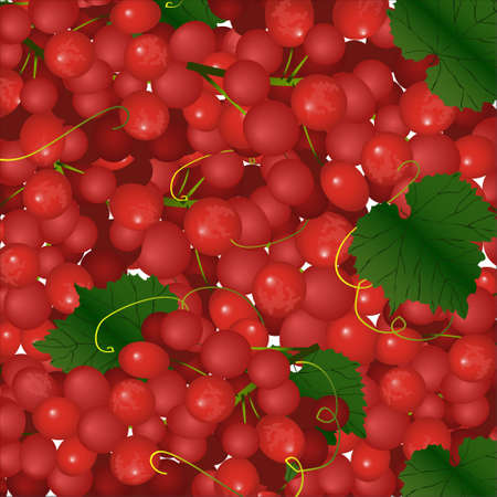 bunches: Vector background of pink bunches of grapes