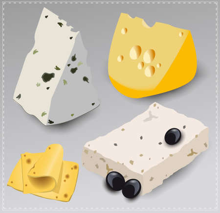 cheese: Set of different kinds of cheese. Vector illustration.