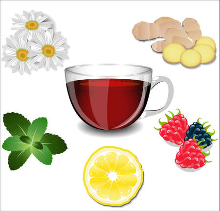 chamomile tea: A cup of tea and various ingredients: lemon, ginger, chamomile, mint and berries.