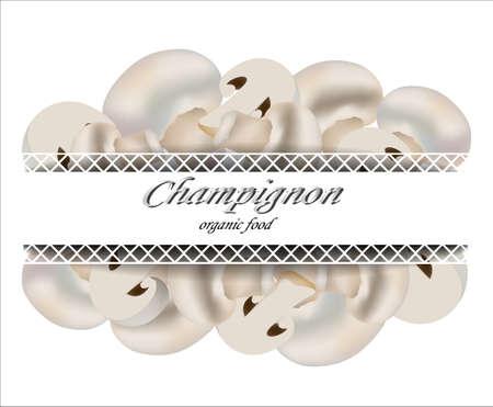champignon: Fresh mushrooms. Champignon. Organic food. Vector illustration.