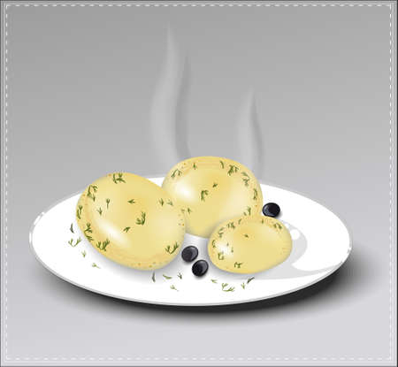 boiled: Boiled potatoes with dill on a white plate. Vector illustration.