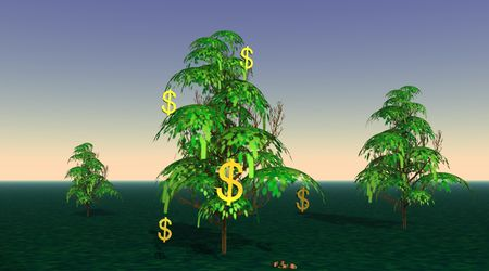 Dollars growing from a tree Stock Photo - 5392293