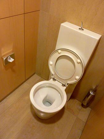 Brown and white toilet Stock Photo - 5597834