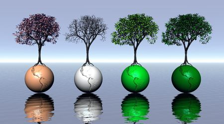 Four colored trees and earth for four seasons Stock Photo