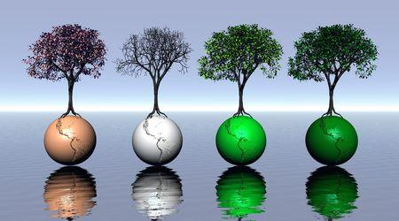 quatre saisons: Quatre arbres color�s et terre pour quatre saisons