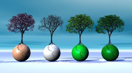 Four seasonal trees on four earth Stock Photo - 5936010