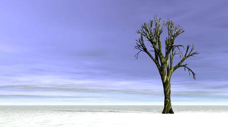 Winter tree Stock Photo - 5936012