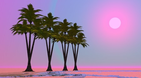 Four palm trees aligned in a desert with little water and by violet and pink sunset