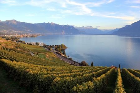 モントルー、日没で湖ジュネーブ、スイスの山の近くの有名な保護されているラヴォー ヴィンヤーズ