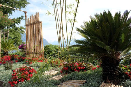 Paradisiac garden with bamboo, palm tree and red flowers in front of mountains photo