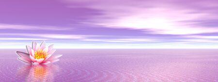 silencio: Flor de lirio rosa en el oc�ano violeta Foto de archivo