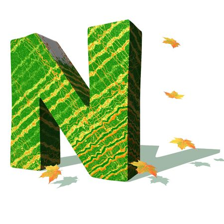 Green ecological N capital letter surrounded by few autumn falling leaves in a white background with shadows Stock Photo - 9494114