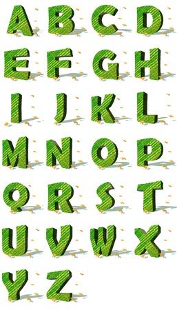 tipos de letras: Conjunto de verdes may�sculas ecol�gicas rodeado por algunas hojas de oto�ales ca�das en un fondo blanco con sombras