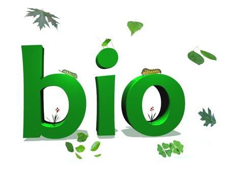 Green bio letters color surrounded by green leaves and insects in white background photo