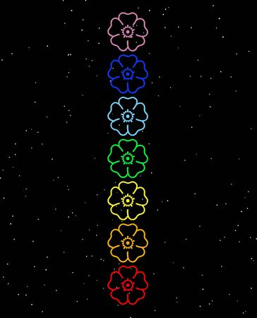 heart chakra red: Colored flowers in chakra column by night