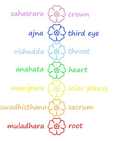 chakra symbol: Colored flowers in chakra column with their names in white background Stock Photo