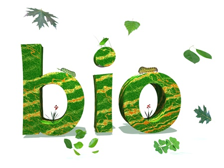 Bio letters in nature color surrounded by green leaves and insects in white background
