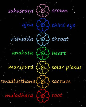 heart chakra red: Colored flowers in chakra column with their names in night background Stock Photo