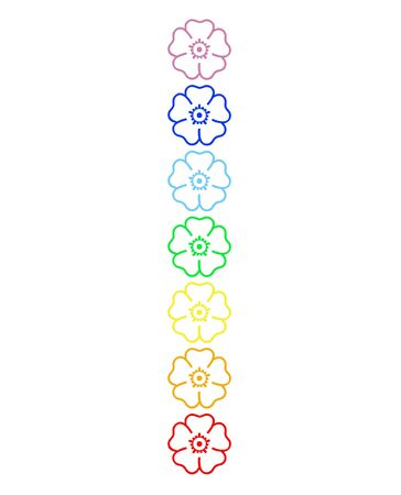 Colored flowers in chakra column  in white background