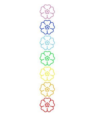 chakras: Flores de colores en la columna de chakra en fondo blanco Foto de archivo