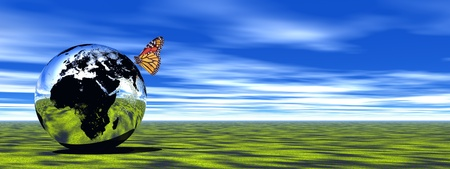 Beautiful colored butterfly upon an earth standing on green grass by cloudy weather