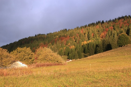 Old white house in a rural landscape near a fir tree forest by autumnal sunset photo
