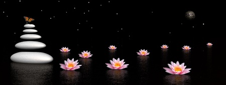 Colored butterfly flying upon grey balanced stones next to beautiful pink lily flowers in the water by dark night with moon and stars