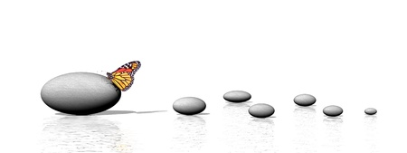 A big grey stone with a beautiful colored butterfly on it and small pebbles in a white background