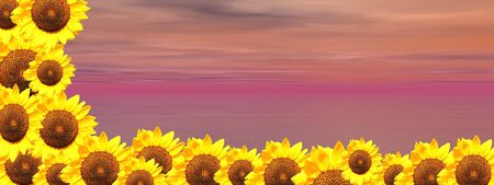 Background of cloudy violet sky and ocean with lots of sunflowers down and on the left side photo