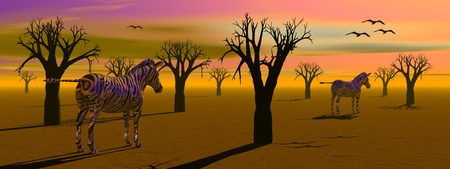 Desert with lots of baobab trees, birds and zebras ba sunset photo