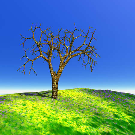 Dead tree in a green grass hill and beautiful blue summer sky photo