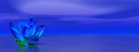 lillies: Blue indigo lily flower in ocean to symbolize sixth chakra