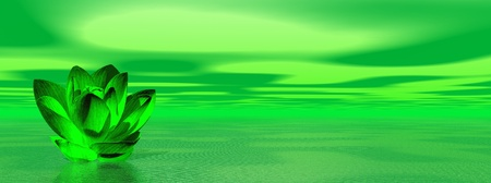 Green lily flower in ocean to symbolize fourth chakra photo