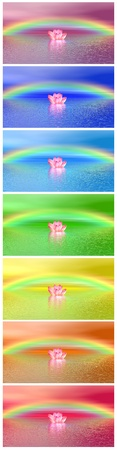 Set of chakra colors of pink lily flowers on water and under rainbow photo