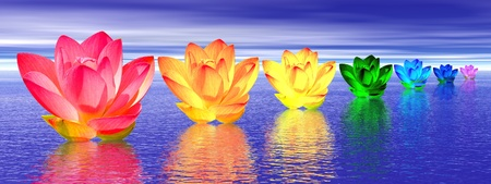 chakras: Chakra colors of lily flower upon water in blue night background
