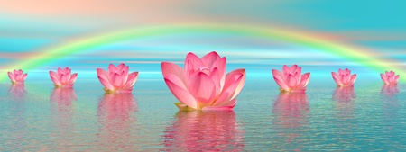 Aligned pink lily flowers on water and under rainbow by beautiful weather