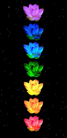 Chakra colors of lily flower in a column in night background photo