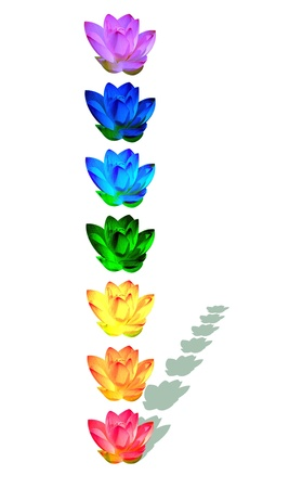 Chakra colors of lily flower in a column with their shadow in white background photo