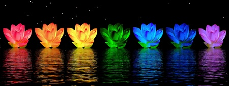 Chakra colors of lily flower upon water in night background photo