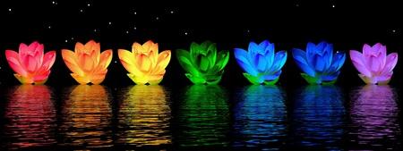 chakra: Couleurs de Chakra de fleur de lys sur l'eau en fond de nuit Banque d'images