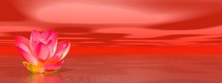 Rote Lilie Blume im Ozean zu symbolisieren erste Chakra